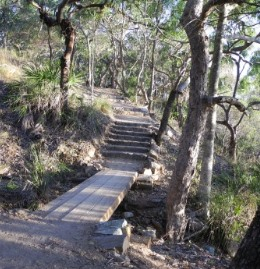 The 1.2km Round Hill Creek track has shady and undulating sections. Photo: Queensland Government