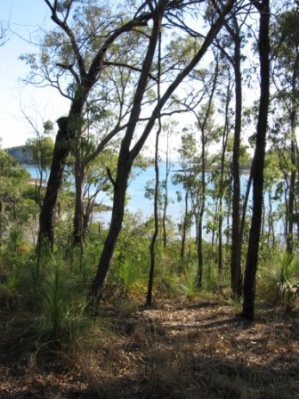 View from Outer Newry Island camp site. Photo: Queensland Government