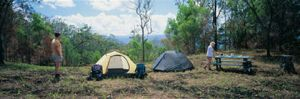 Pack Trail camp site. Photo: Queensland Government.