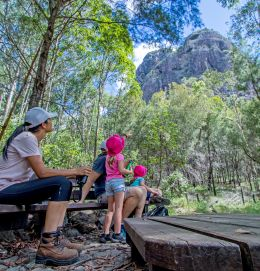 The Tibrogargan circuit walk is a great walk for families. It leads around the base of the peak and provides good views of the mountain. Photo: Robert Ashdown, Queensland Government.