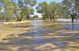 Water across the road near Bollon. Photo: © Queensland Government