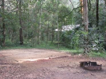 Image of Neurum Creek camping area. Photo: Queensland Government.