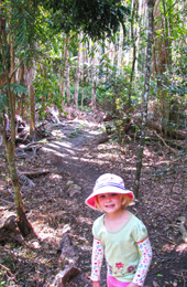 Visitors of all ages enjoy The Palms' short circuit track. Photo: Karen Smith © Queensland Government
