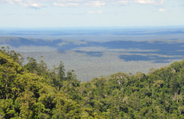 Hike to the summit to enjoy expansive views. Photo Brian Tighe, Queensland Government.