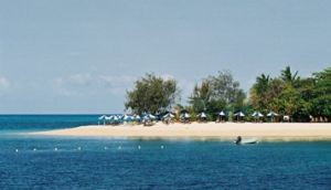 Relax under the umbrellas on Green Island. Photo: Queensland Government.