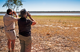 Pack your camera, binoculars or spotting scope. There is much to see at Lake Broadwater.