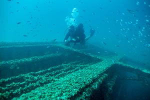 Diver at the Ex-HMAS Tobruk.