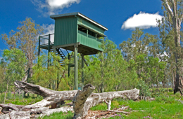Watch waterbirds from the bird hide near the lake's 'neck'.
