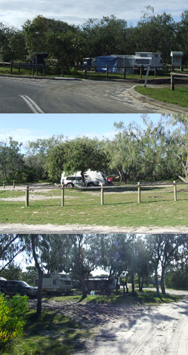 S.S. Dorrigo camping area is within a short walk to the beach. Photo: Queensland Government