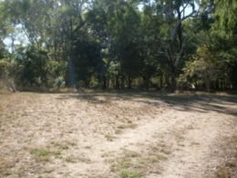 Camp site one at Dingo Waterhole camping area. Photo: Queensland Government.