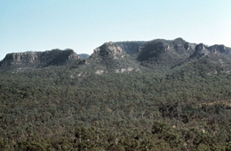 Sandstone outcrops surrounded by eucalypt woodland at Salvator Rosa. Photo © Queensland Government.