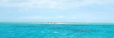 Upolu Cay at low tide. Photo: Leila Trott, Ocean Freedom.
