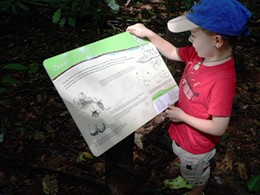 Image of a child learning about the Ngadjon-Jii culture from a trail sign.