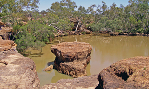 Hell Hole Waterhole is the park's main feature. Photo: © Queensland Government