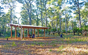 The Cabbage Tree camping zone has water provided via an underground tank.