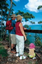 Take a short stroll with the family along the K'gari (Fraser Island) Great Walk from Kingfisher Bay Resort. Photo: Queensland Government