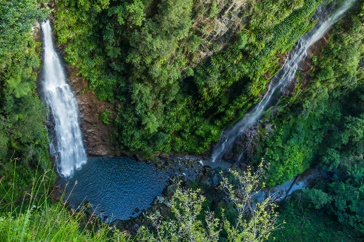 Waterfalls drops vertically down rock face surrounded by green rainforest into a rock pool.