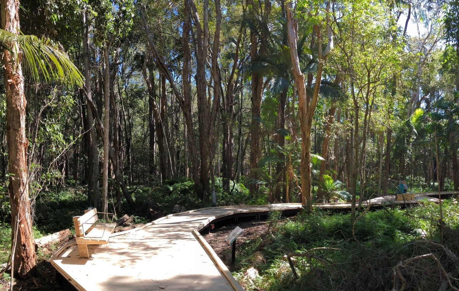 image of the paperbark trail