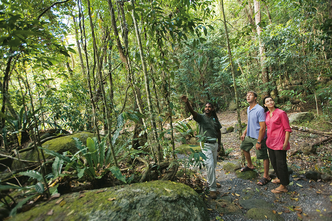 Dreamtime Gorge Walk | © Tourism and Events Queensland Alt text< an Aboriginal guide points out a feature for two visitors in a clearing surrounded by rainforest.