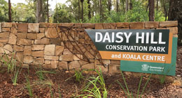 Daisy Hill Conservation Park is only 25km south-east of Brisbane City.