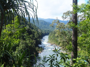 The Tully River is popular for rafting and kayaking and for spectacular gorge views. Photo: Audrey Reilly © Queensland Government.