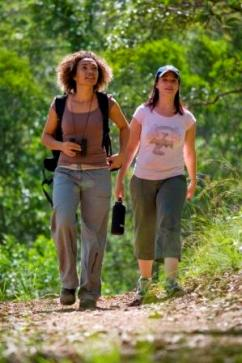 Take a bushwalk along one of the many walking tracks in D'Aguilar National Park. Photo: Queensland Government.