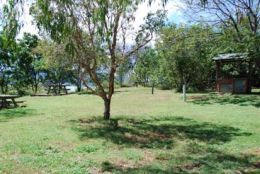 Picnic areas are a short stroll from the car park. Photo: Margaret Macindoe, Queensland Government.