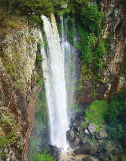 Image of the spectacular Queen Mary Falls.