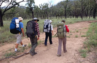 Image of overnight walkers in remote Homevale section.