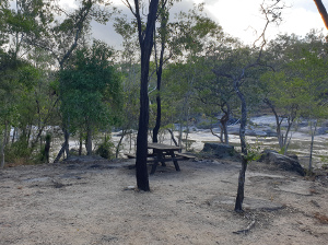 Picnic table at Lower Davies Creek camping area. Photo: Brittney Butler © Queensland Government.