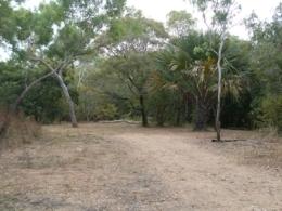 Camp site two at Melaleuca Waterhole camping area.