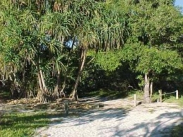 Image showing camping area on the largest island in the Capricornia Cays.