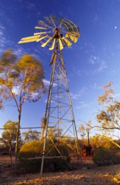 Relics of the park's pastoral history still exist. Photo: Robert Ashdown © Queensland Government