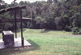Enjoy a picnic in the day-use area after your rainforest walk. Photo: Queensland Government.