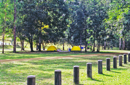 Image of Emu Creek camping area. Photo: K. Smith, Qld Govt.