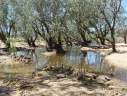 The Alice River frontage.