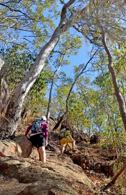 Expect challenging and rocky uphill sections on the Yul-yan-man track. Photo: Kate McGuiness, Queensland Government.