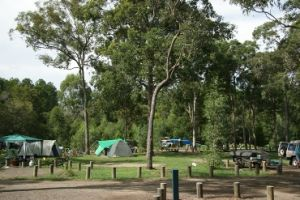 Coochin Creek camping area. Photo: Queensland Government.