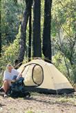 Stony Creek camp site. Photo: Queensland Government.