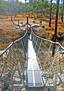 A suspension bridge allows the Maranoa River to be safely crossed