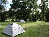 Goldsborough Valley camping area.