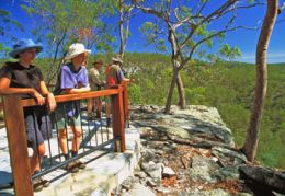 The Giant's Chair lookout, in the shade of pink spotted gums, is a great place to obtain a view over the varied vegetation communities of Cania Gorge. Photo: Robert Ashdown, Queensland Government.