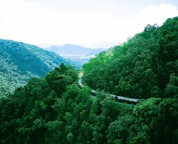 The Kuranda Scenic Railway travels through the park.