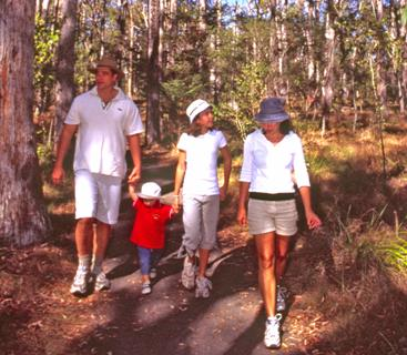 Enjoy a leisurely stroll along one of the walking tracks at Mount French section. Photo: R. Ashdown, Queensland Government.