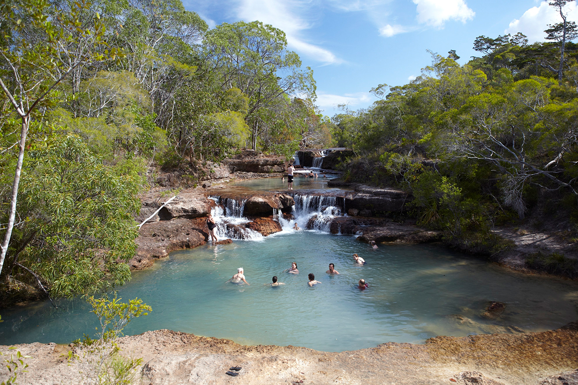 People swim in rockpool in a creek where water cascades down rocky ledge from pool above.