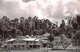 The quarters of the 2/1st Australian Convalescent Depot on the banks of Lake Barrine, 16 August 1943.