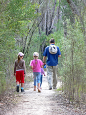 Image of Girraween National park which is a great place for walking.