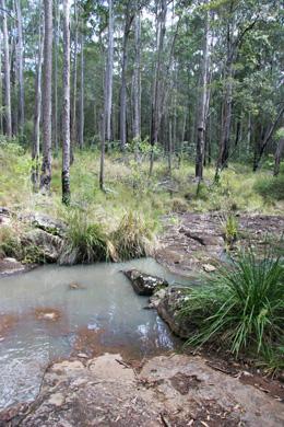 Rocky Creek, Parklands Conservation Park.