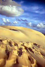 Sand dune, Mulgumpin (Moreton Island). Photo courtesy of Tourism Queensland.