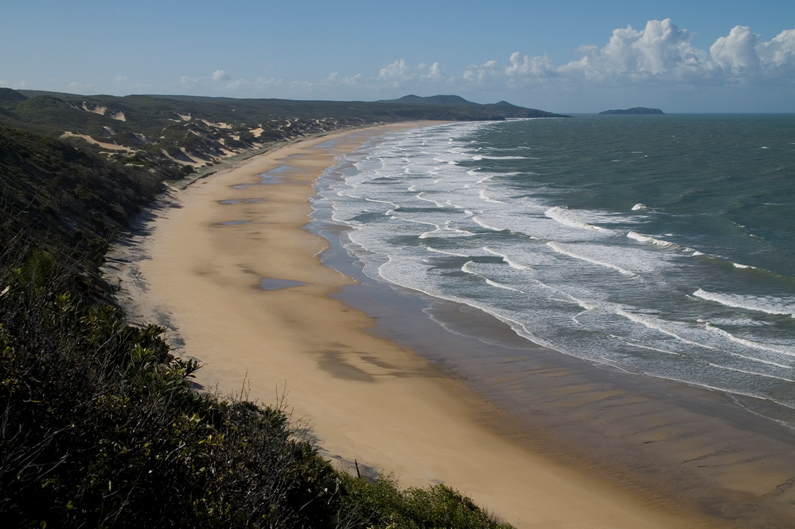 Scenic view along remote beach with vegetated sand dunes on shore and waves rolling onto beach from the ocean.